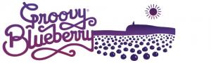 logo-300x90Blueberry-Logo