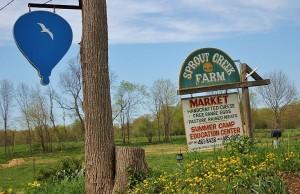 Sprout Creek Farm 1